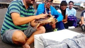 educacion-ambiental-inclusiva-Avafes-Canarias_EDIIMA20150729_0536_18